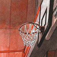 スポーツと暴力と軍隊式の関係 - アガパンサス日記(ダイアリー)