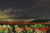 30年9月の富士(2)山中湖畔の花と富士 - 富士への散歩道 ~撮影記~