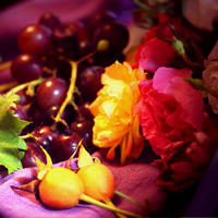 ローズガーデンで秋の打ち合わせ。 - poem  art. ***ココロの景色***
