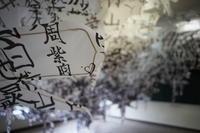 大地の芸術祭(9) 奴奈川キャンパス - 雲フェチ