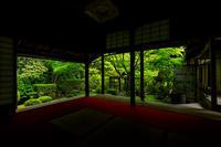 新緑とサツキの桂春院 - 花景色-K.W.C. PhotoBlog