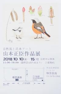 『#個展2018』開催中 - スケッチ感察ノート (Nature journal)