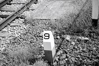 秋簾月 寫誌 ⑧ 東海道線下り熱海行き15両編成 - le fotografie di digit@l