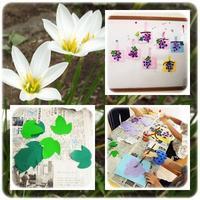 秋🍂 - ひのくま幼稚園のブログ