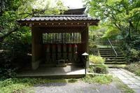 王禅寺 地蔵堂から本堂へ - エンジェルの画日記・音楽の散歩道