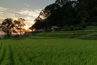 夕闇迫る田園 - katsuのヘタッピ風景