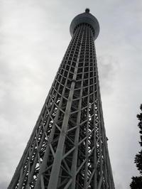 いきなり大きい! 9/14 - つくしんぼ日記 ~徒然編~