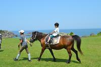 秋も種差!!乗馬、トレッキング、朝ヨガ…土曜日に開催されるイベントに行ってみよう - たねブロ(青森県八戸市種差海岸ブログ)