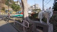 Vol.1389 宮ケ谷台公園 - 小太郎の白っぽい世界