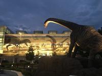 恐竜の里 福井県恐竜博物館!! - ふくい女将日記~宝永(ほうえい)旅館、おかみでございます。