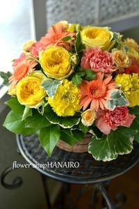 おっさんと仔猫 - 花色~あなたの好きなお花屋さんになりたい~