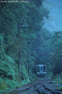 雨の道 - PTT+.