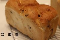 私のスキルアップ9月編 - パン・お菓子教室 「こ む ぎ」