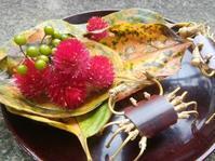 蟹と柿… - 侘助つれづれ