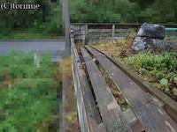 9/14・見積り各種→菰野・T様(塀の現調) - とり三重成るままにsince2004
