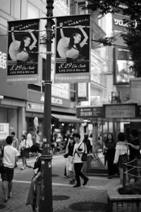 FINAL - 心のカメラ  〜 more tomorrow than today ...