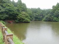 秋の雨、秋の花 - 千葉県いすみ環境と文化のさとセンター