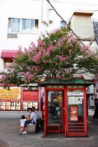 初、南京町 - HAPPY to ...