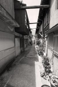 西脇散歩 - Life with Leica