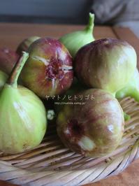無花果とヘクソカズラ - yamatoのひとりごと