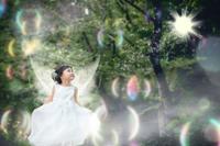 森の妖精 - ゆ る め の じ か ん
