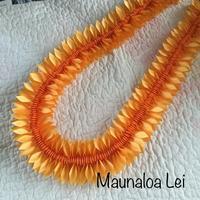 Maunaloa - パンの木ぷらす~備忘録