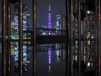 2018.9.14 3色の東京タワー(晴海客船ターミナル) - ダイヤモンド△△追っかけ記録