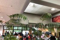 和牛ハンバーガー&ビーフパストラミサンド 日本武道館 - 麹町行政法務事務所
