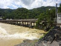 嵐山 渡月橋の欄干が.... - はっぴー ばい まいせるふ