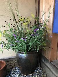 秋の野原を思って・・・「玄関と外看板のお花が入りました。」編 - 納屋Cafe 岡山