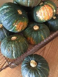 2018年10.11月レッスンご案内 - Blooming Kitchen 坂の上の小さな料理教室
