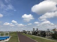 江戸川から関宿経由利根川へ - pottering