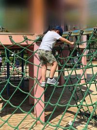育児中の課題〜男の子育児  兄弟の体力〜 - そらいろ