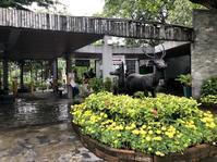 今月末で閉園するドゥシット動物園へ@ドゥシット - ☆M's bangkok life diary☆