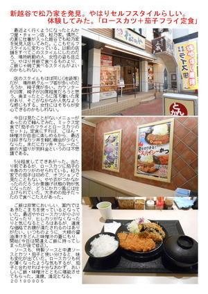 新越谷で松乃家を発見。やはりセルフスタイルらしい。体験してみた。「ロースカツ+茄子フライ定食」