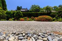 サツキ咲く方丈庭園(酬恩庵一休寺) - 花景色-K.W.C. PhotoBlog