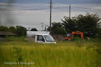 18散歩〜かくれんぼ - 散歩と写真 Fotografia e Passeggiata
