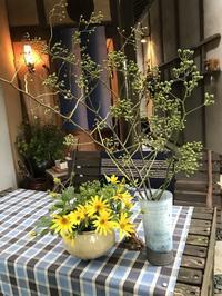 おひとり様向き!??「庭席が整いました。」編 - 納屋Cafe 岡山