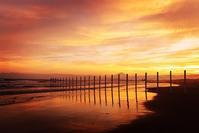 夏の思い出鵠沼海岸の白杭 - エーデルワイスPhoto