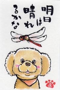 赤とんぼもずくちゃん☆トラちゃん☆桔梗 - まゆみのお絵描き絵手紙