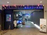 東京タワー水族館へ行って来ました! - 続々・動物園ありマス。