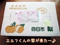 エルフの梨 - サモエド クローカのお気楽日記