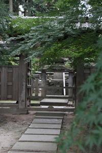 弘経寺の彼岸花 - 燕雀の夢