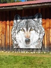 Wolf Centre at Haliburton forest - 2度目のリタイア後のライフ