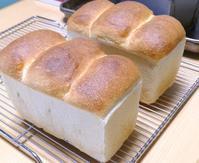 春よ恋で山食 - ~あこパン日記~さあパンを焼きましょう