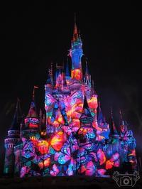 Celebrate! TokyoDisneyland - Happy Photo