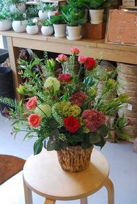 3連休はたくさんのご来店ありがとうございました。 - 花と暮らす店 木花 Mocca
