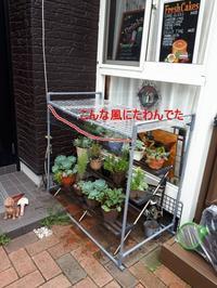 多肉植物の棚 修理!!! - 柴犬 ひろゆきと さもない毎日&週末自宅カフェ里音 (りをん) 一之江・笑い療法士のいるカフェ