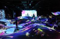 既に30万人が訪れた世界初のデジタルアーツ美術館(その最終回) - 旅プラスの日記