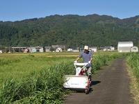 ウォーキングコースの草刈り作業をしました - 浦佐地域づくり協議会のブログ